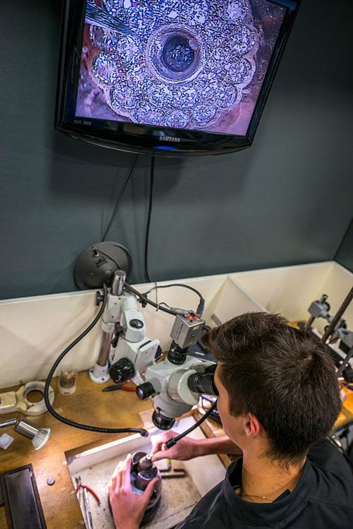 Vérification du bijoux à l'aide d'une trinoculaire