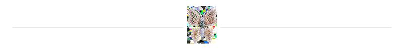 séparateur papillon en diamants